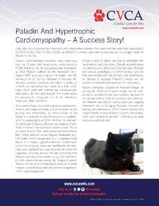 CVCA-Paladin Handout - January 2018.jpg
